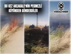 PEKMEZLİ'DE TARLA YANGINI